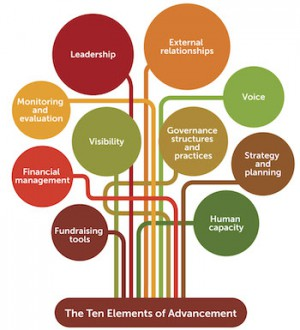Advancement: a way of thinking about organisational sustainability