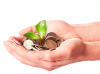 Budgeting for non-profits